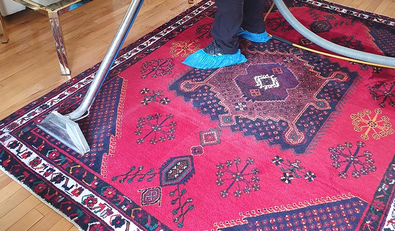 Persian Rug Cleaning – VIP Carpet Cleaning