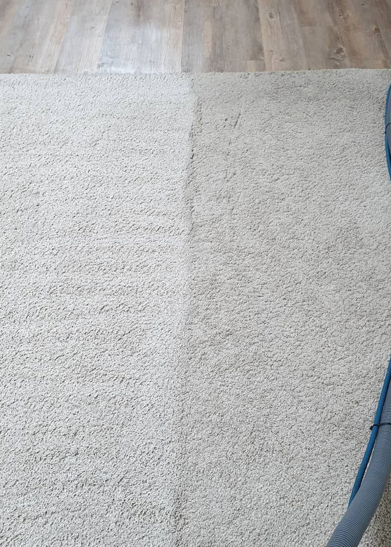 Our Rug Cleaning Service – VIP Carpet Cleaning