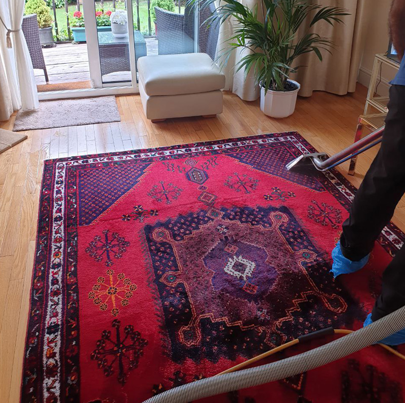 Exceptional Performance – VIP Carpet Cleaning