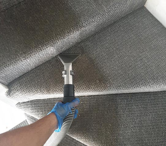 Professional Carpet Cleaning Services – VIP Carpet Cleaning
