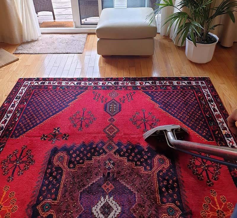 Persian Rug Steam Clean – VIP Carpet Cleaning