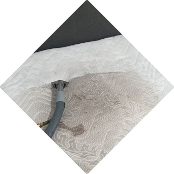 Upholstery Cleaning – VIP Carpet Cleaning