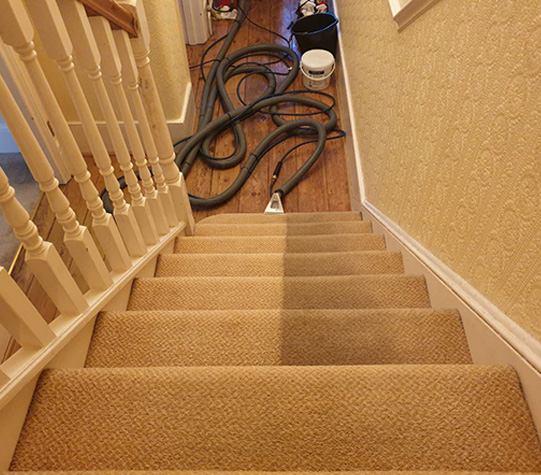 Professional Carpet Cleaners – VIP Carpet Cleaning